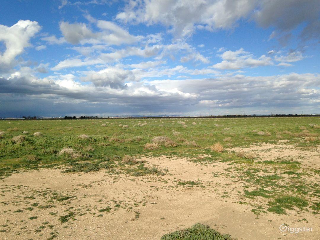 Landing Strip- Desert Photo 5