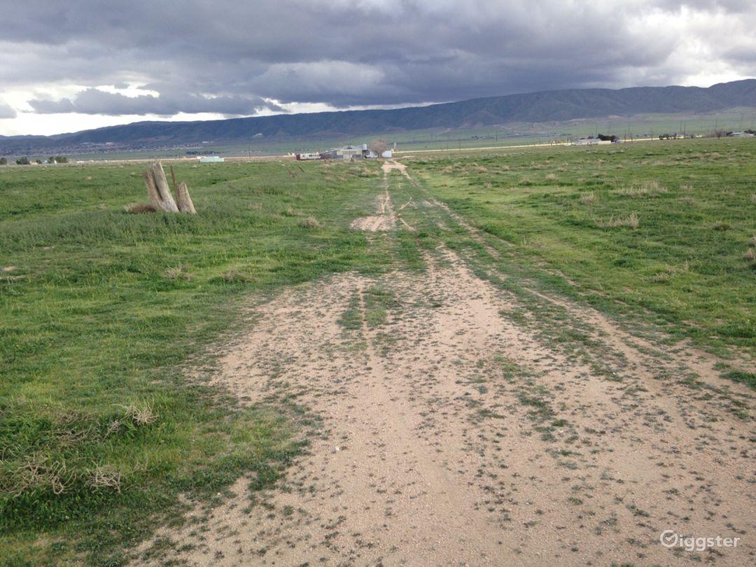 Landing Strip- Desert Photo 3