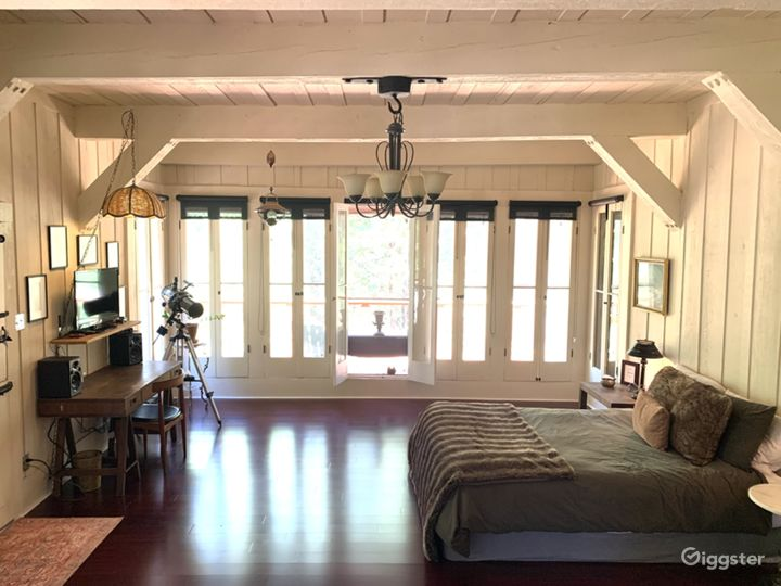 Large Studio Living Room/Bedroom (bed can easily be removed)