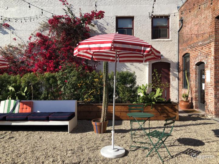 Urban Courtyard and Cactus Garden Photo 3