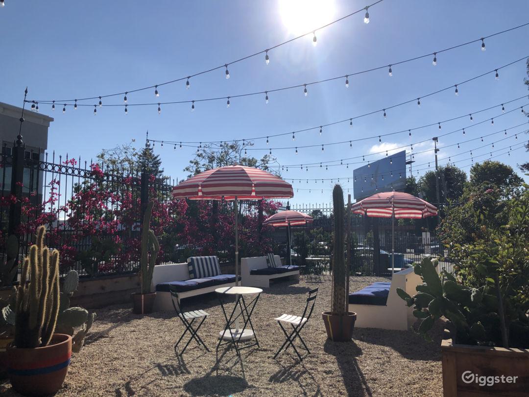 Urban Courtyard and Cactus Garden Photo 1