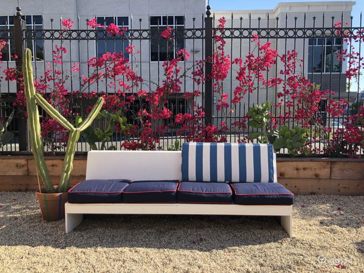 Urban Courtyard and Cactus Garden Photo 4