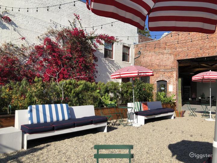 Urban Courtyard and Cactus Garden Photo 5