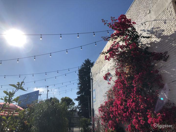 Urban Courtyard and Cactus Garden Photo 2
