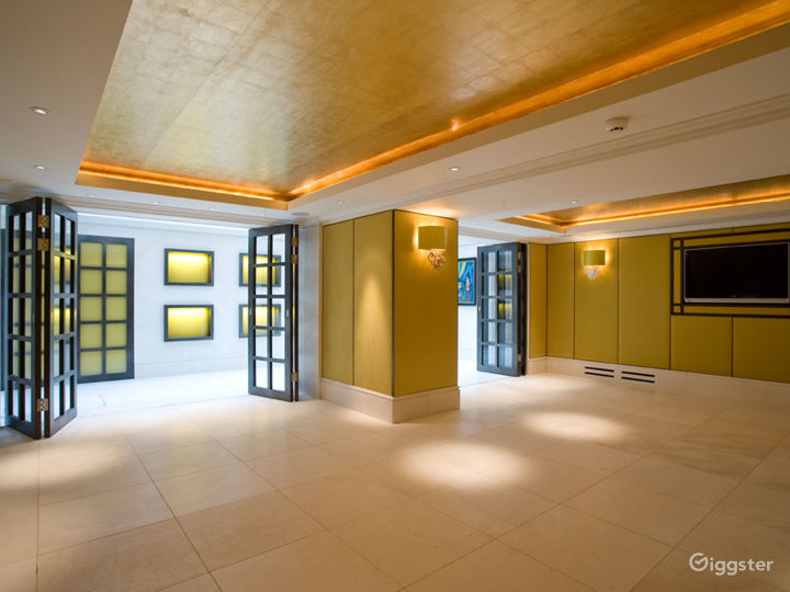 Suite with Gold Leather Wallpaper and Glass Roof in London  Photo 2