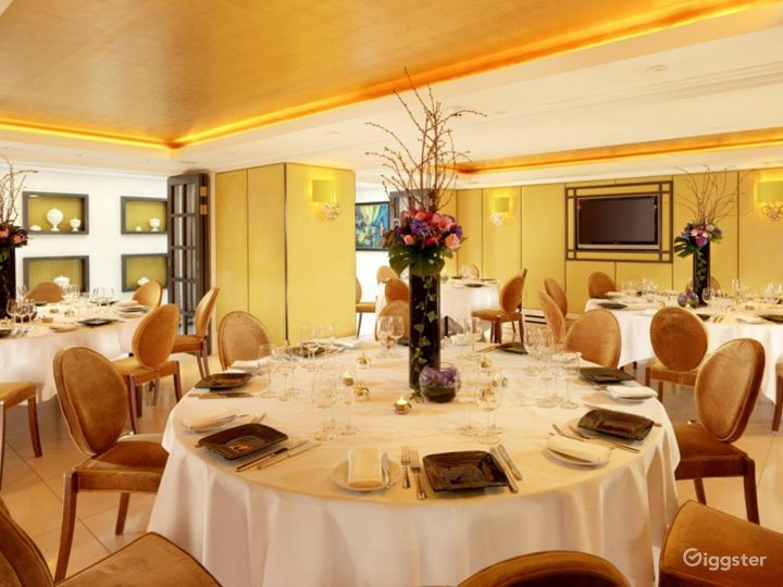 Suite with Gold Leather Wallpaper and Glass Roof in London  Photo 3