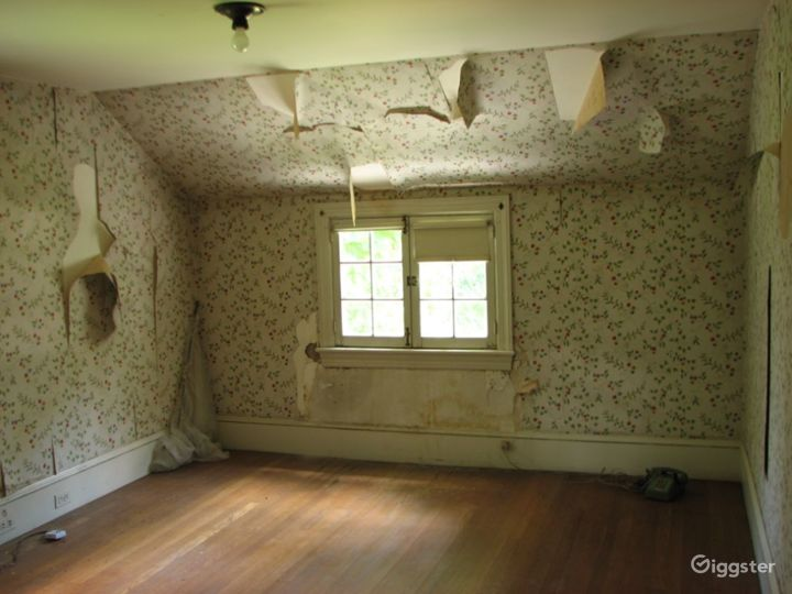 Dilapidated farm house: Location 4042 Photo 4