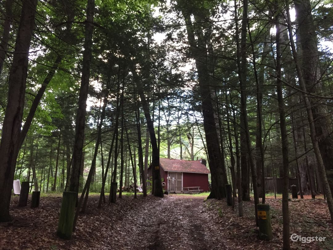 New England-Style Cabin On The River Photo 3