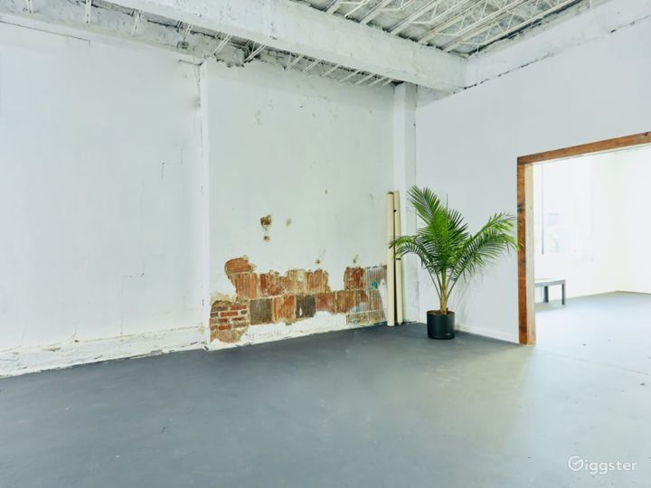 Natural Lit Studio with Cyclorama Wall in Orlando Photo 4