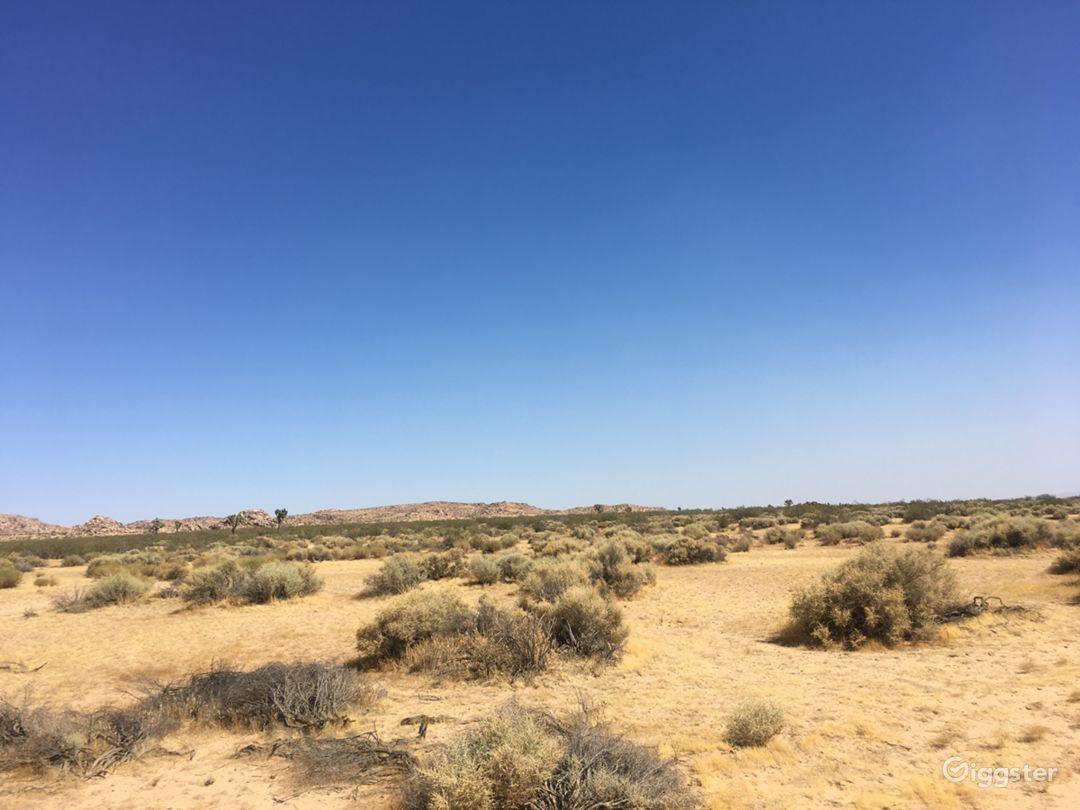 Desert Land Space Photo 4
