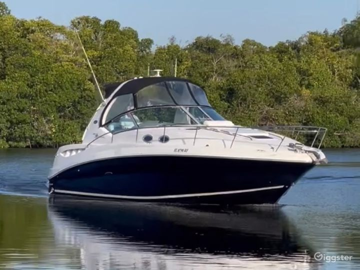 Charming 35FT Sea Ray Reinier Party Boat Space Events Photo 2