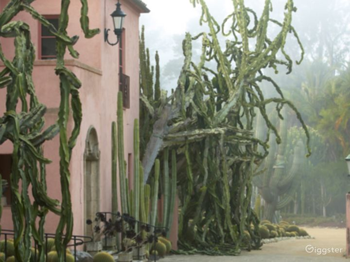 Montecito Horticultural Extravaganza Photo 2