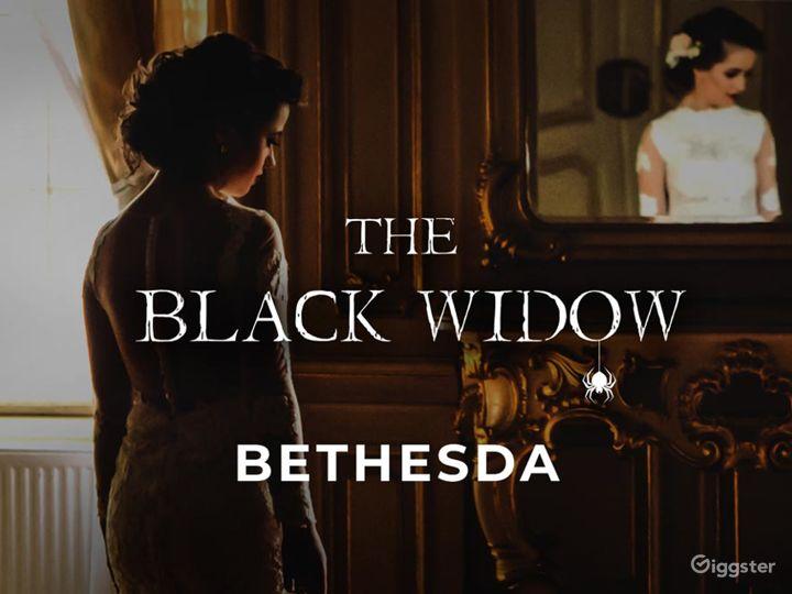 The Black Widow Escape Room in Bethesda Photo 5