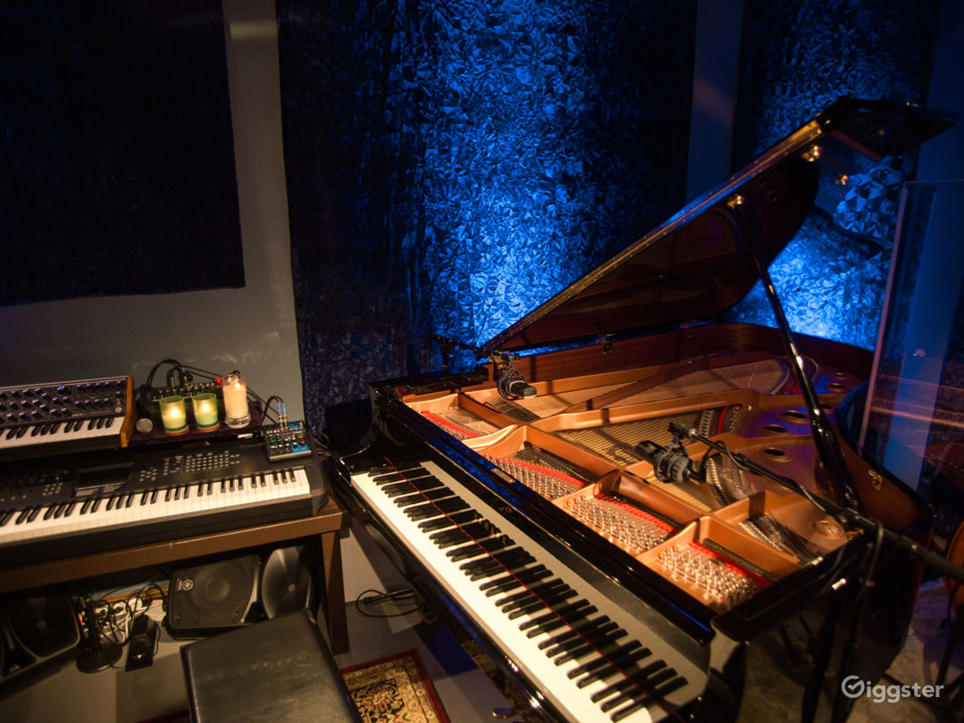 Music Recording Studio With Engineer  Photo 4