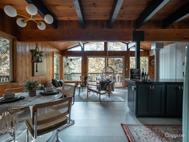 Black A-Frame Mid-Century Cabin in the Mountain Photo 3
