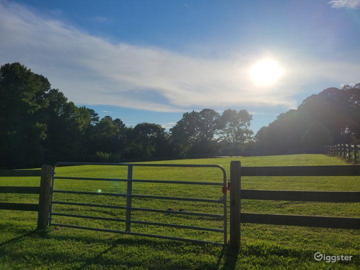 Mini Horse Farm With Beautiful Pastures! Photo 3