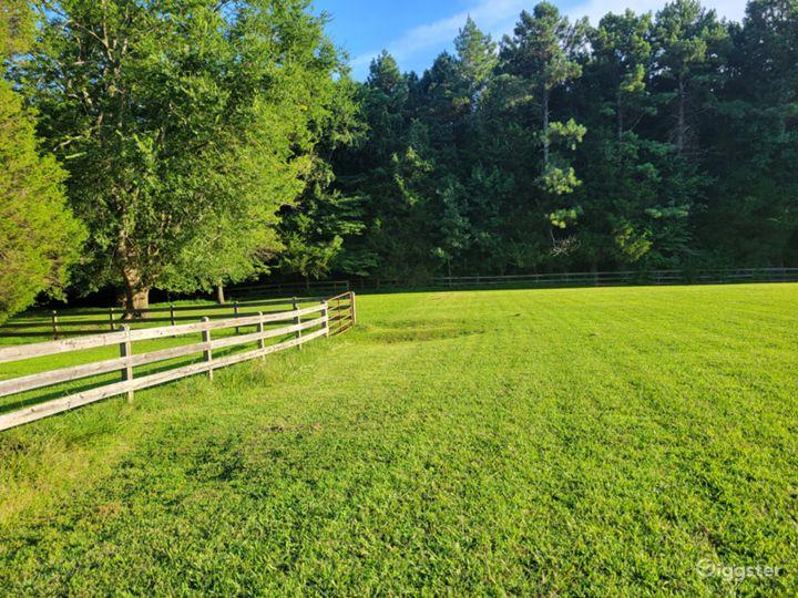Mini Horse Farm With Beautiful Pastures! Photo 5