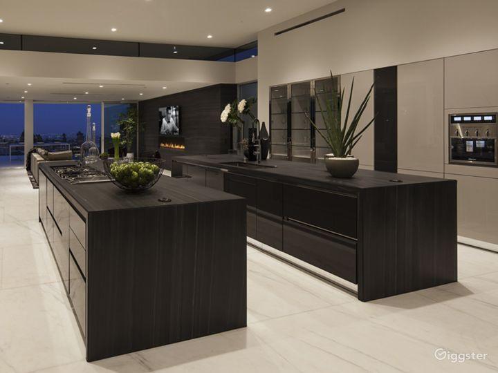 Ultra Modern Design Beverly Hills Mansion Photo 4