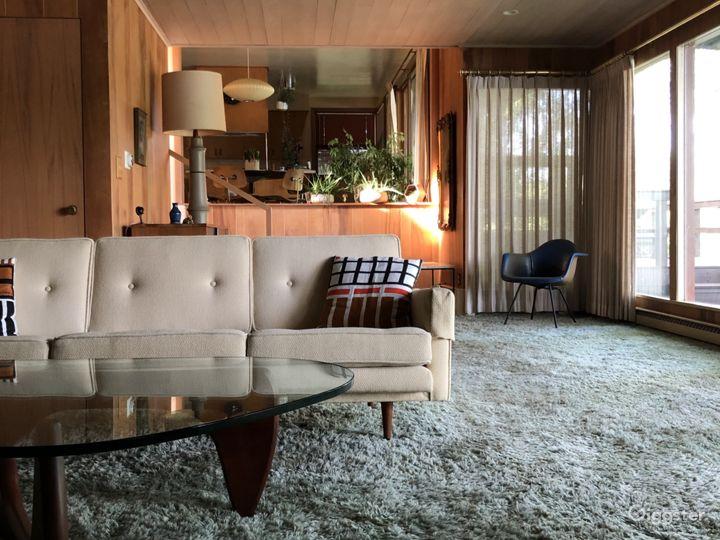 Mid-Century Modern Lake Home Photo 5