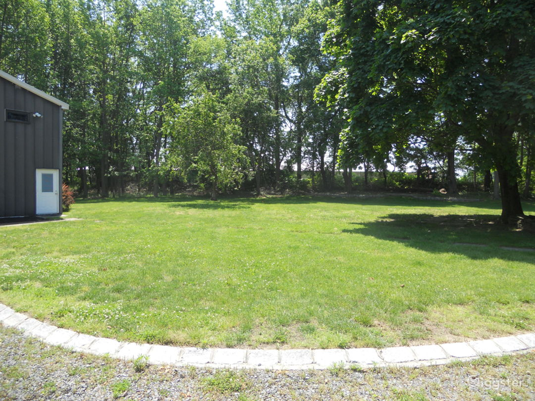 Large back yard that is up against a forest