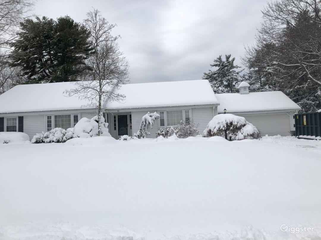 Front yard in last snow