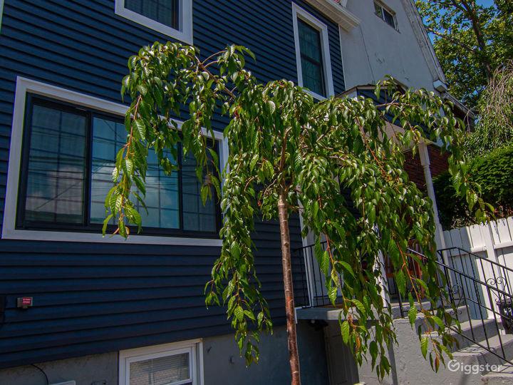 3 story home w. Backyard Photo 2