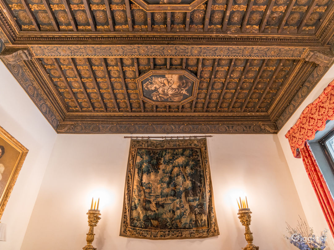 Renaissance Style Room in New York Photo 1