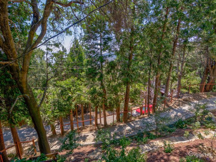 Cedarpines Mountain Escape w/ Skyline City Views Photo 3
