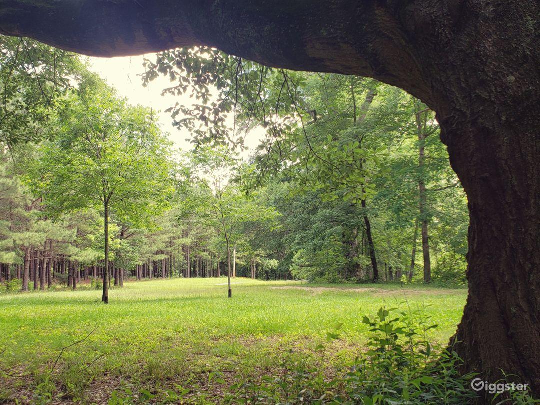 Pebble Creek Estate  Photo 1