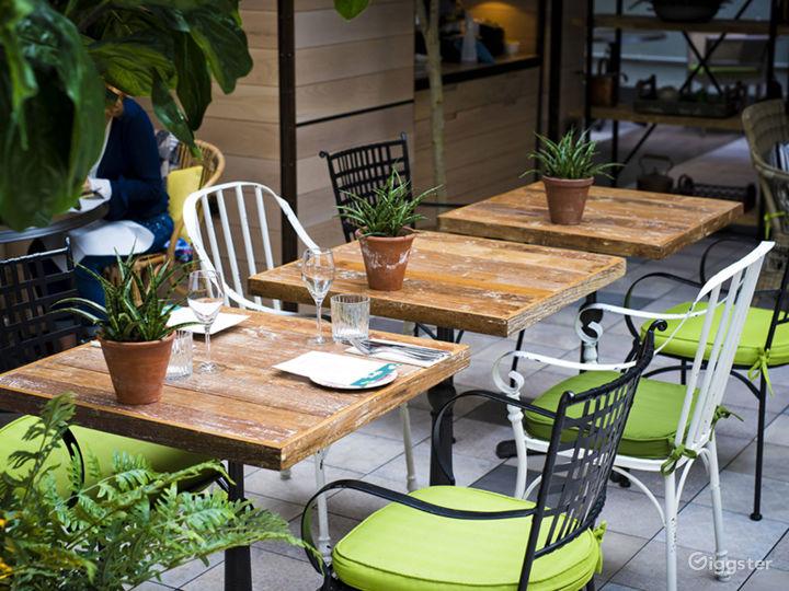 Bright and Airy Garden Restaurant in Edinburgh Photo 5