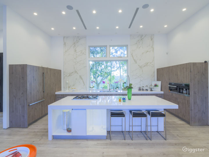 Drenched with natural light and clean lines , this property is   perfect for photo shoots/video- modern appliances