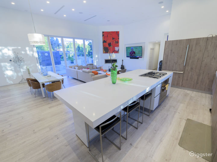 Look at this island AND Modern kITCHEN. Perfect for cooking shows.