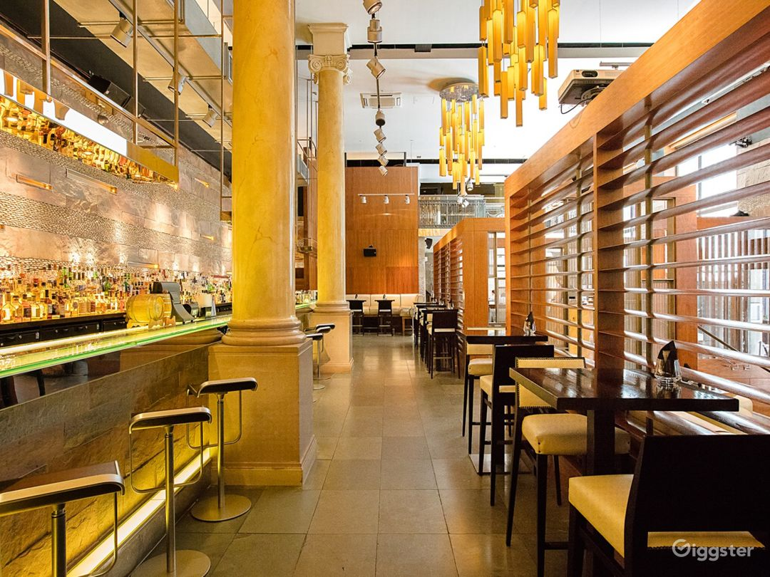 Stylish and Contemporary Modern Indian Restaurant Photo 1