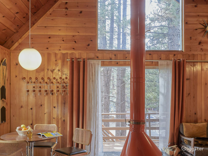 Mid Century cabin with fireplace in the middle.  Photo 2