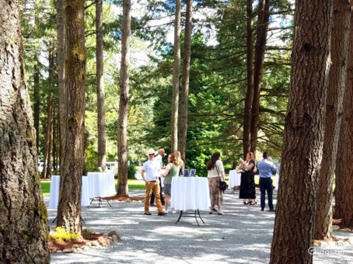 Event Space Canopied by Evergreen Trees Photo 3