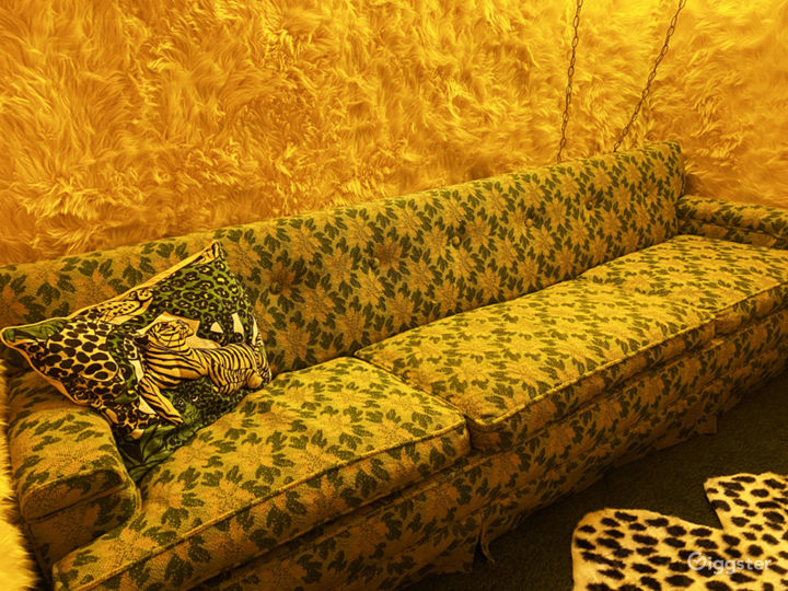 Vintage late 60's couch and pillow.