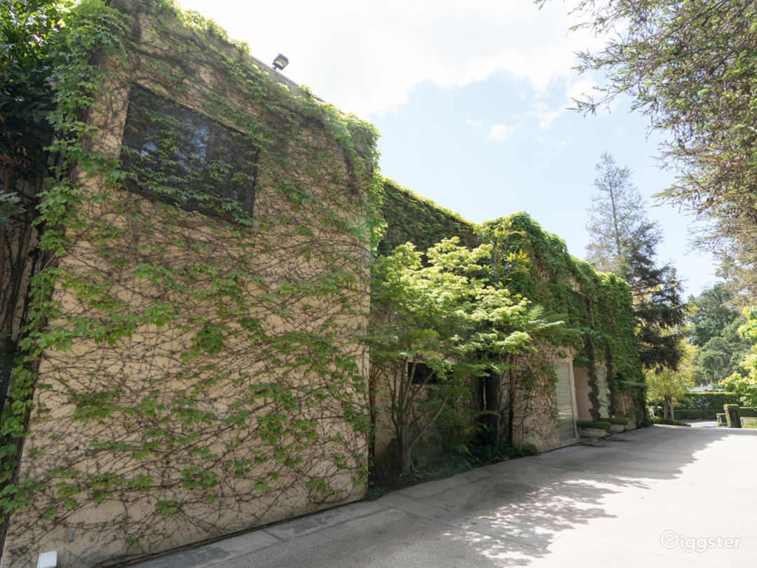 Ivy Covered Dream  Photo 5