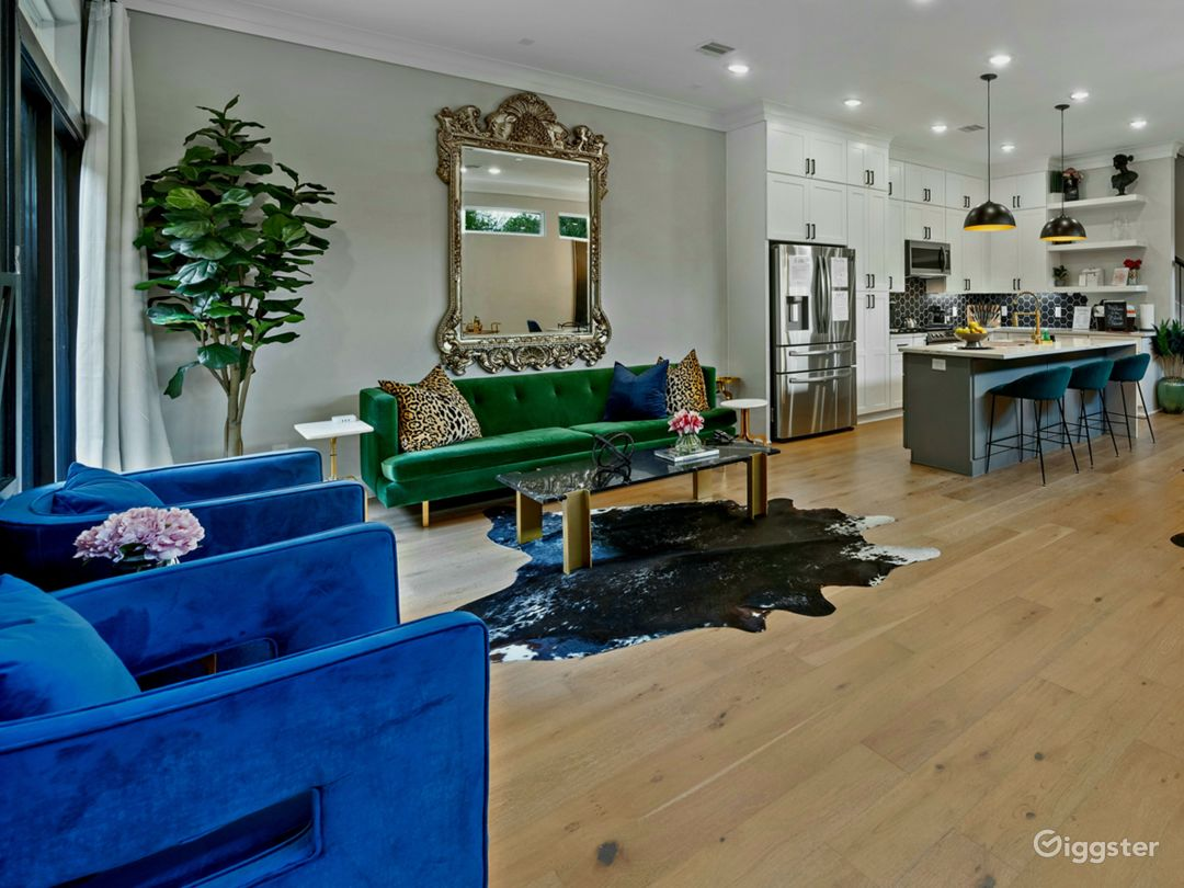 Modern Luxury Black House in Downtown Houston  Photo 1
