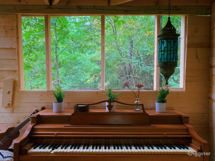 Piano studio room looking out at the forest. This is part of the treehouse, 15 feet in the air. There is also a ladder to the roof deck on top of this piano room, at which point you are 25 feet in the air.