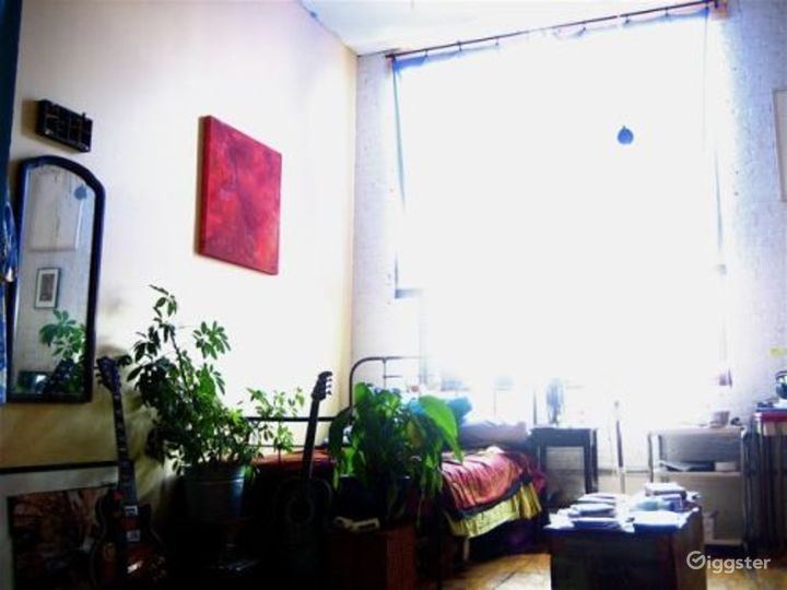 Funky Brooklyn apartment: Location 4155 Photo 4
