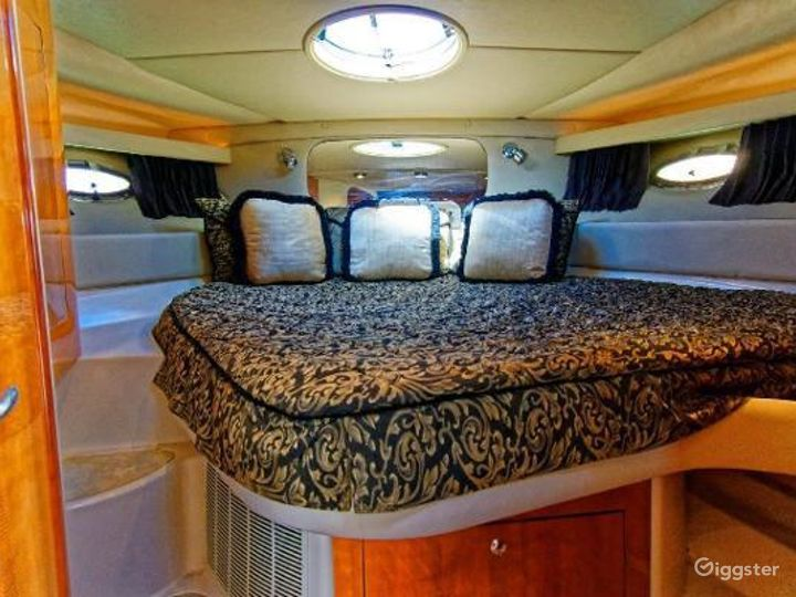Radiant 40FT Regal Party Yacht Space Events Photo 4