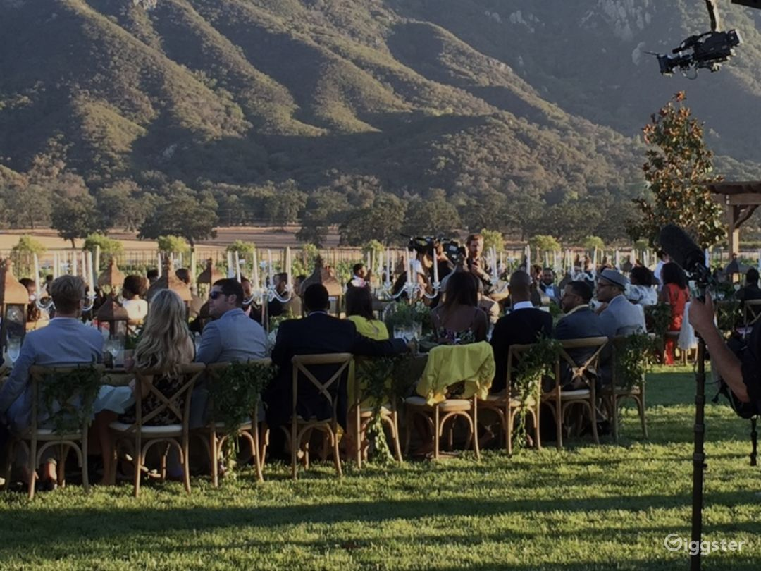 World Class Vineyard and Estate Photo 3