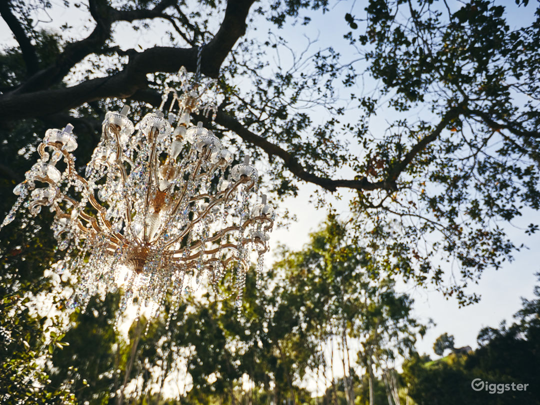 Topanga Compound | The Carriage  Photo 5