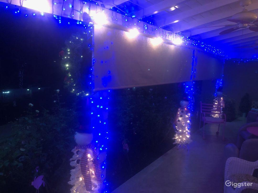 Christmas House, seasonal decor, holiday  Photo 5