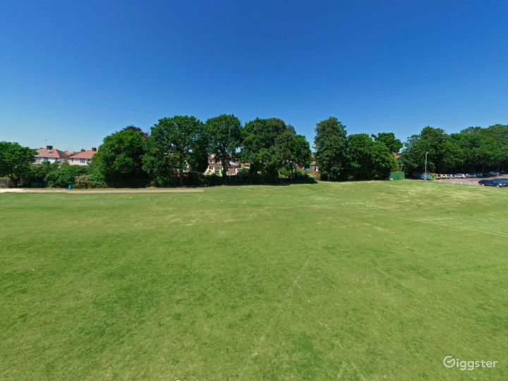 Amazing Top Field in London Photo 4