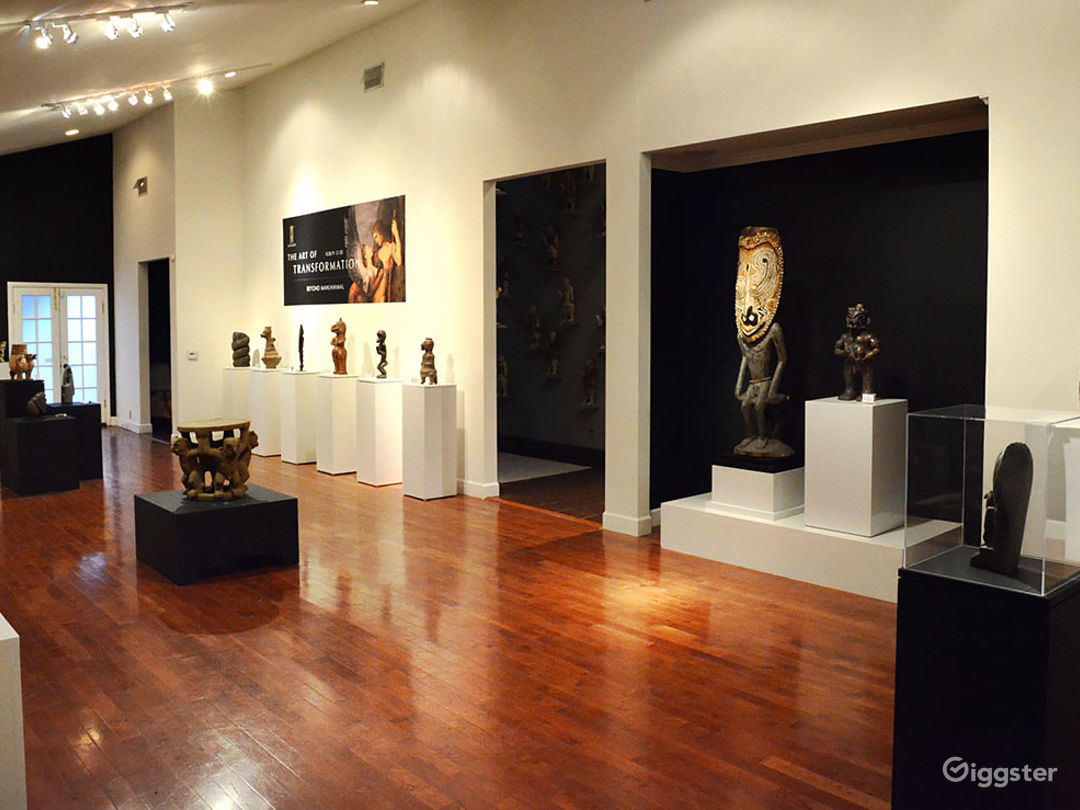 Art Gallery/Museum Space Photo 1