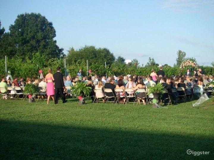 Vineyard Winery Venue - Outdoor Space Photo 2