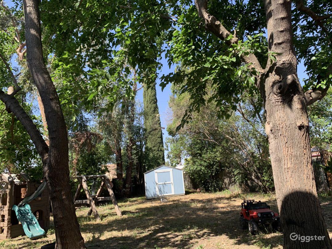 Large shady trees